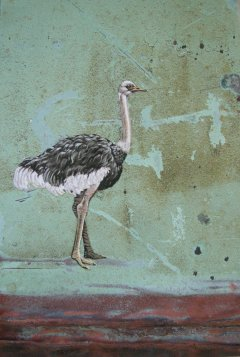 Ostrich on Copper No. 072