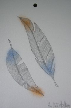 FEATHERS No. 080