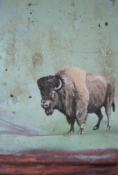Buffalo on Copper. No. 086