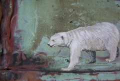 Polarbear on Copper. No. 085