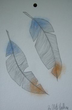 FEATHERS No. 081